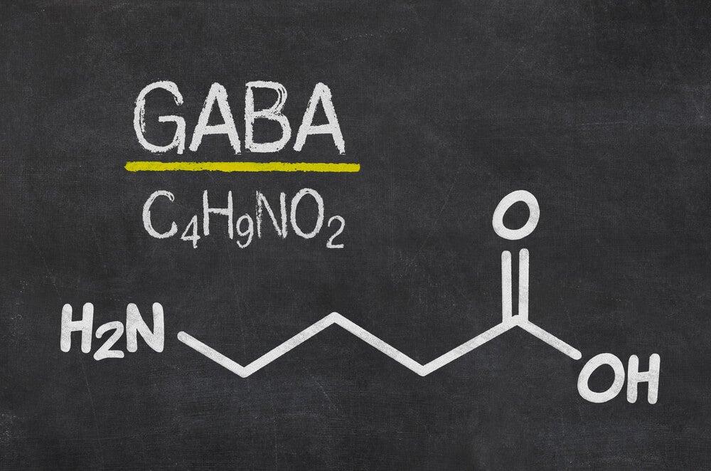 gaba ácido gamma aminobutírico neurotransmisor