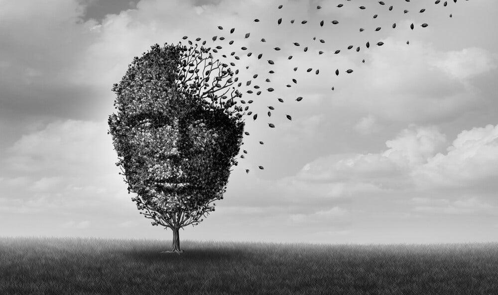 memoria recuerdos olvidar amnesia