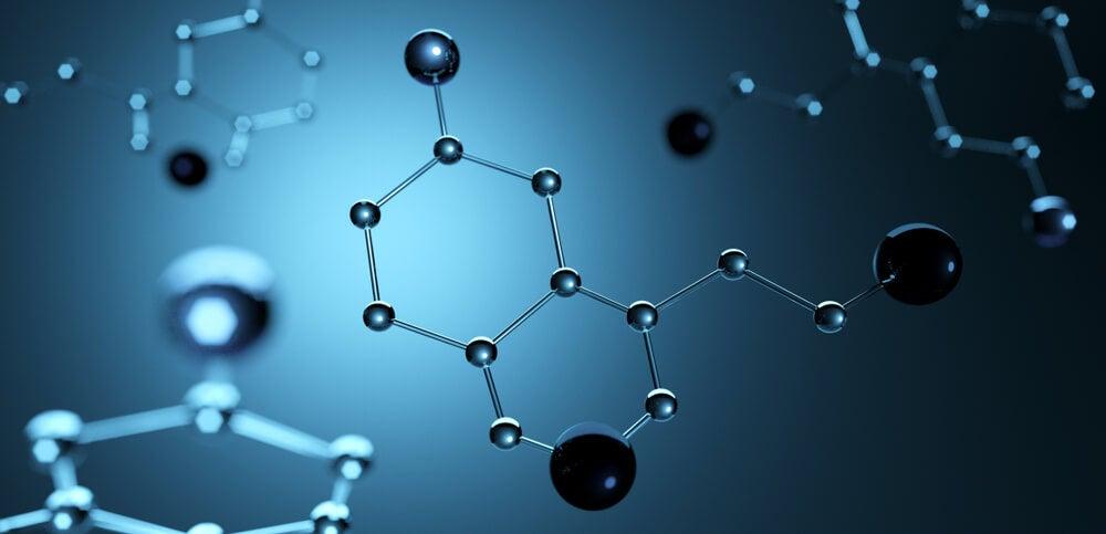 serotonina monoamina neurotransmisor