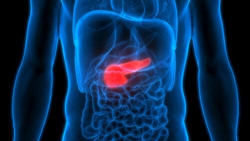 Pancreatitis: síntomas, causas y tratamiento