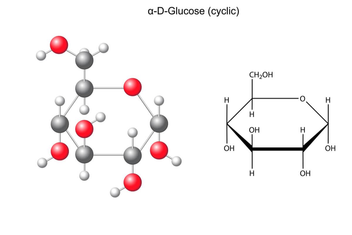 5 maneras de luchar metabolismo de la galactosa