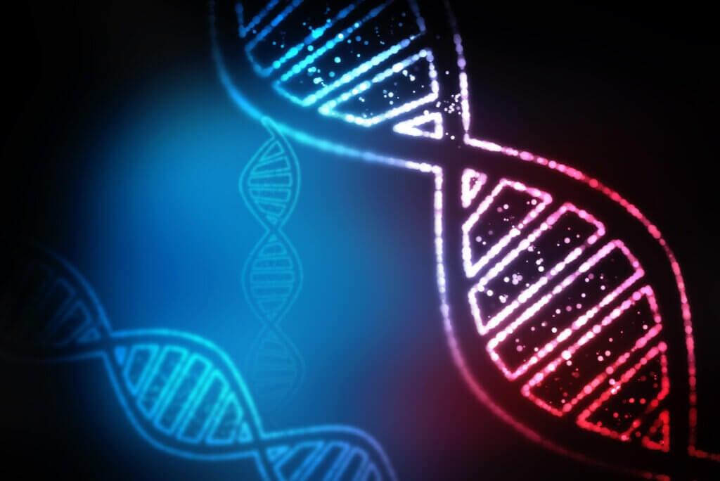 Doble hélice de ADN en un virus.