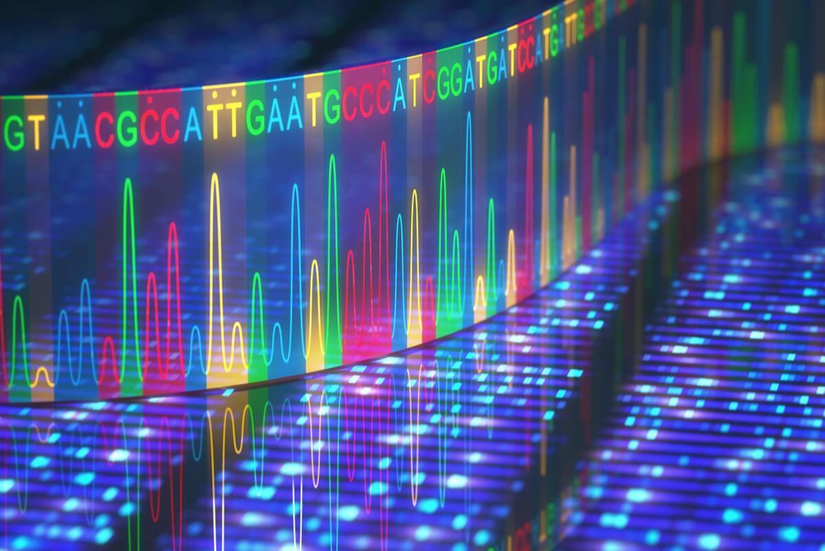 Mecanismos de transcripción del ADN.