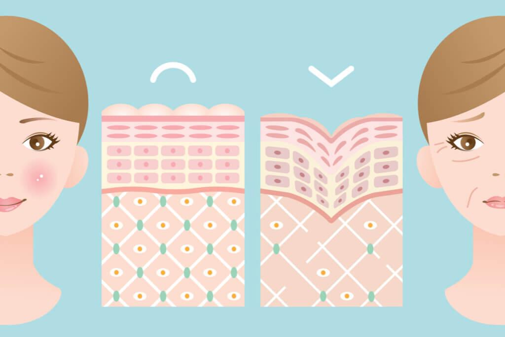 Los 5 beneficios más importantes de tomar colágeno