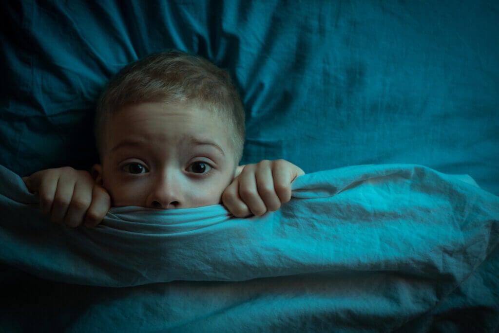 Pesadillas en el sueño REM.