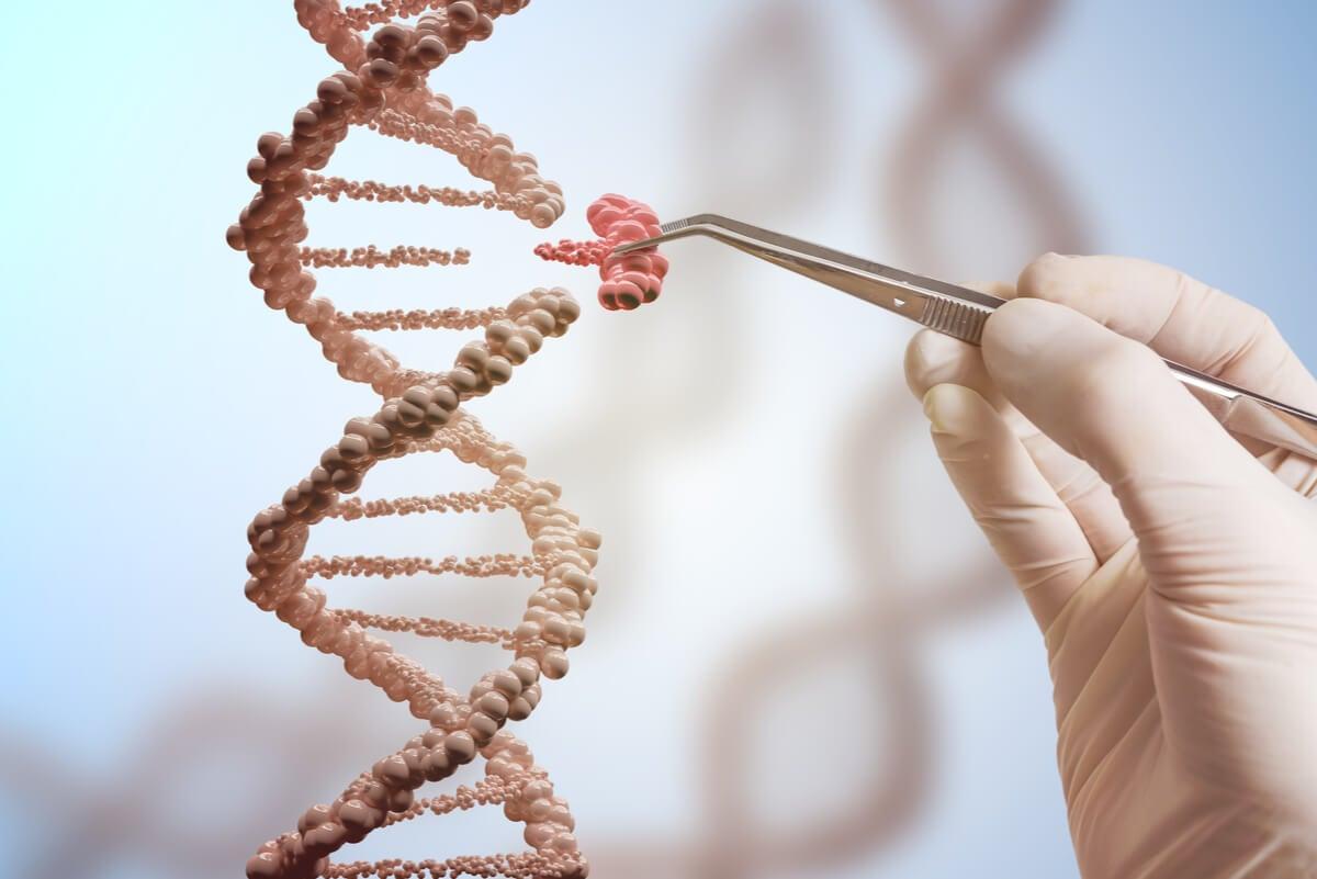 Bases de la genética: todo lo que necesitas saber