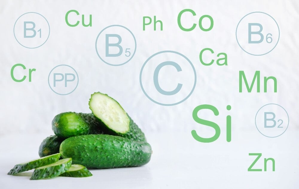 El pepino es un alimento que contiene varios minerales.