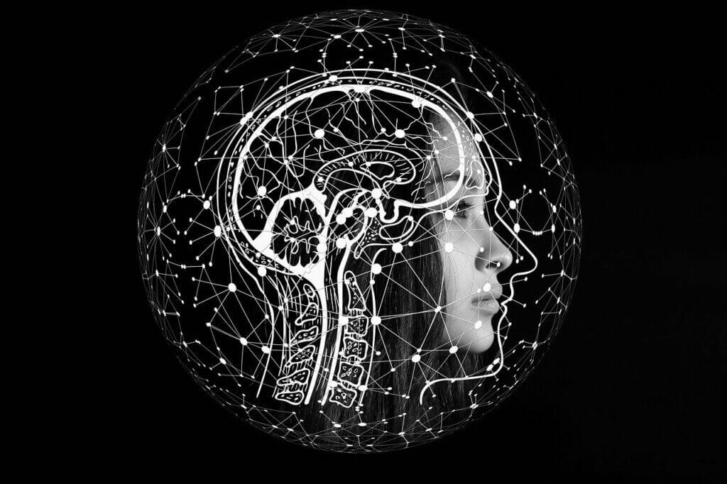 Cerebro está compuesto por mucha agua.