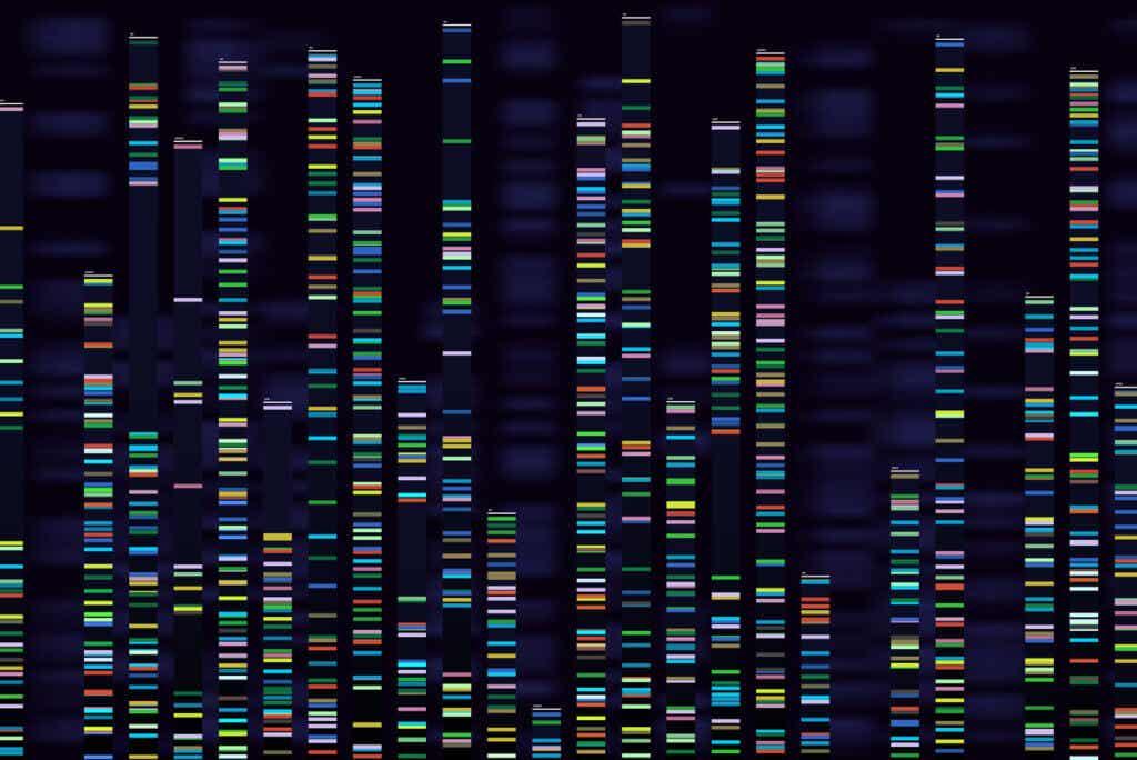 Codones del código genético.