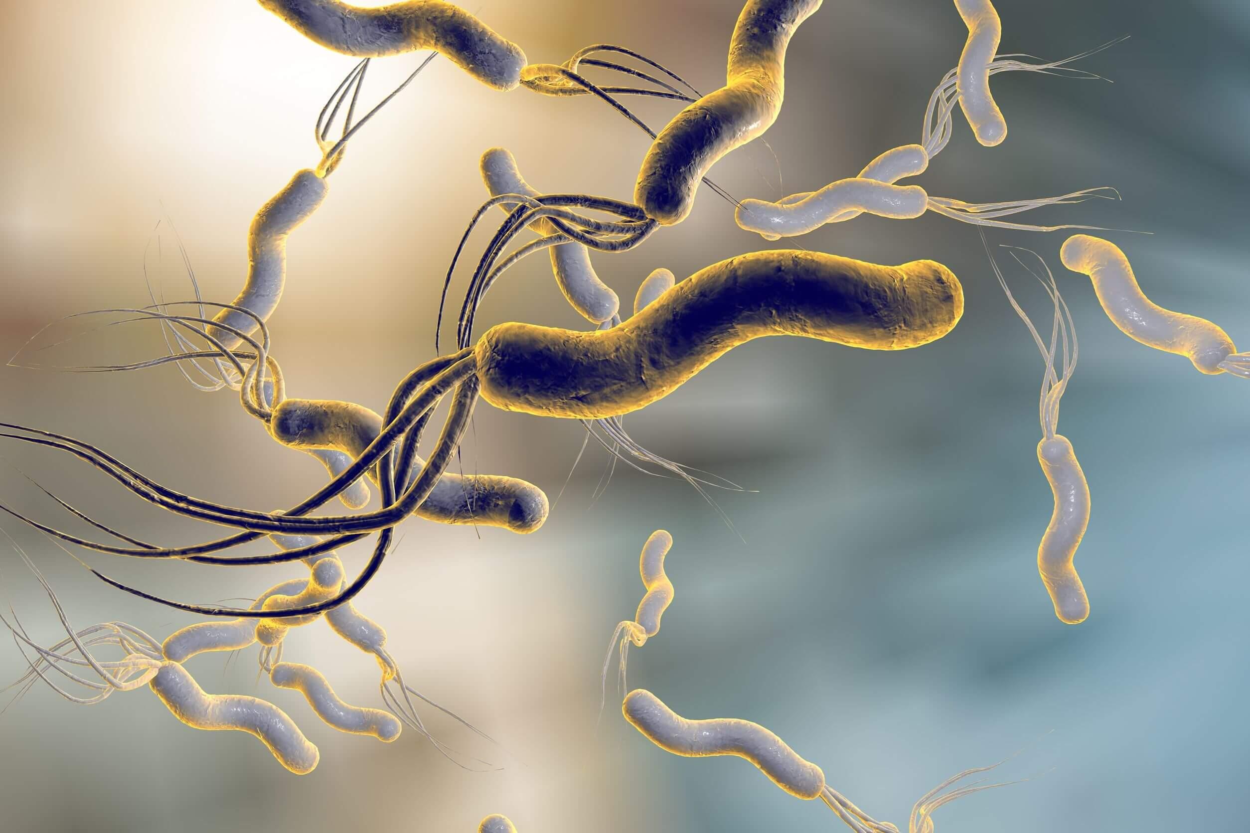 Las infecciones bacterianas pueden ocasionar epigastralgia.