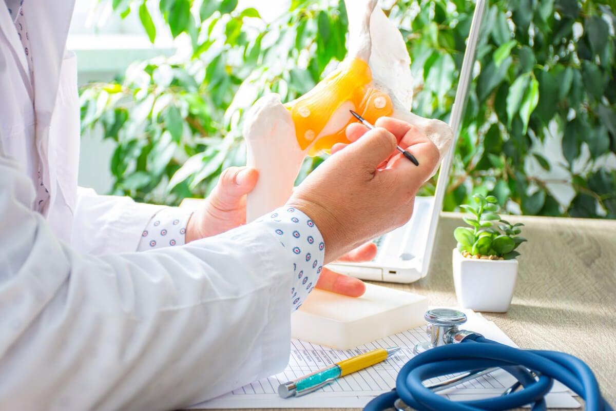 O médico examina o osso com osteoporose.