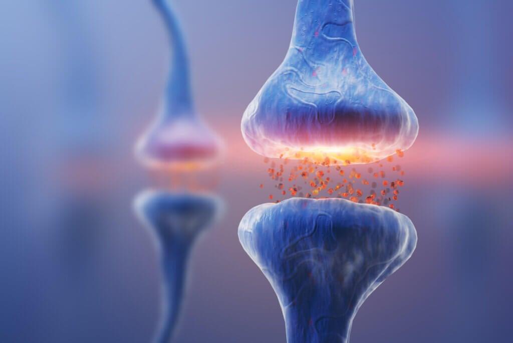 Sinapsis neuronal con disminución del impulso nervioso.