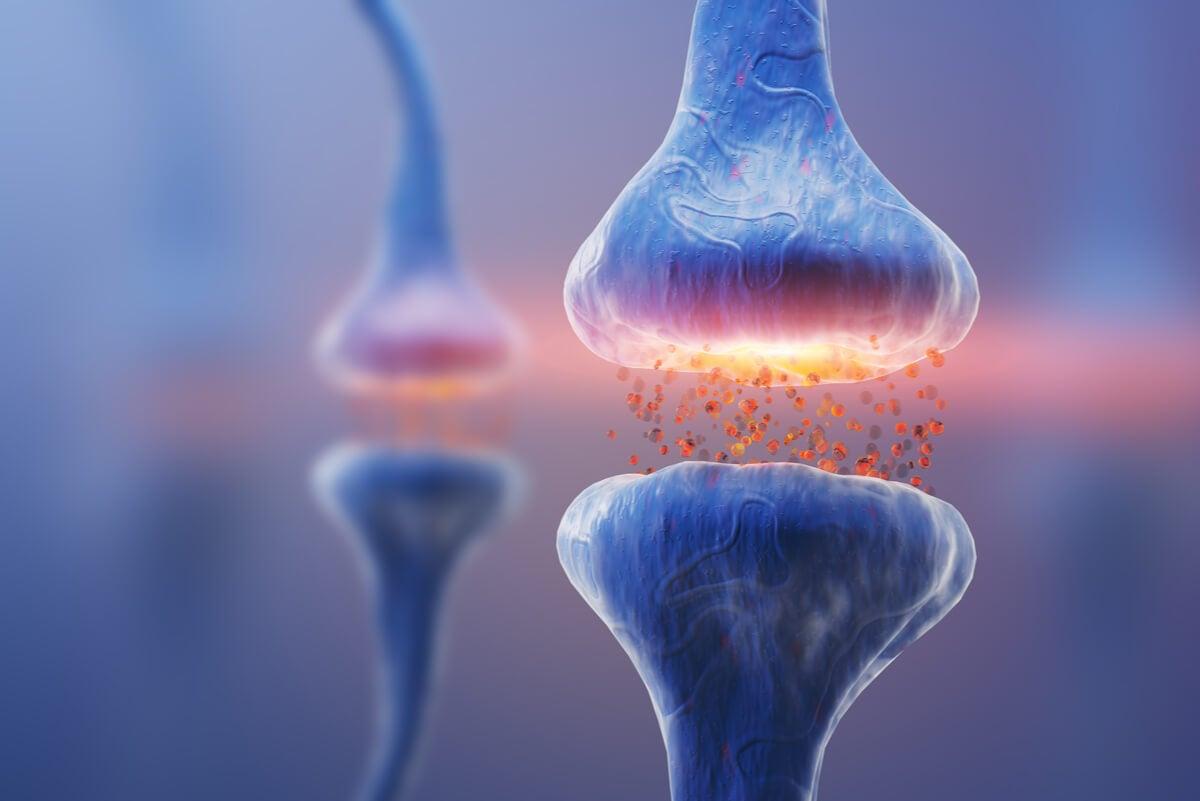 Diabetes can cause diarrhea from peripheral neuropathy