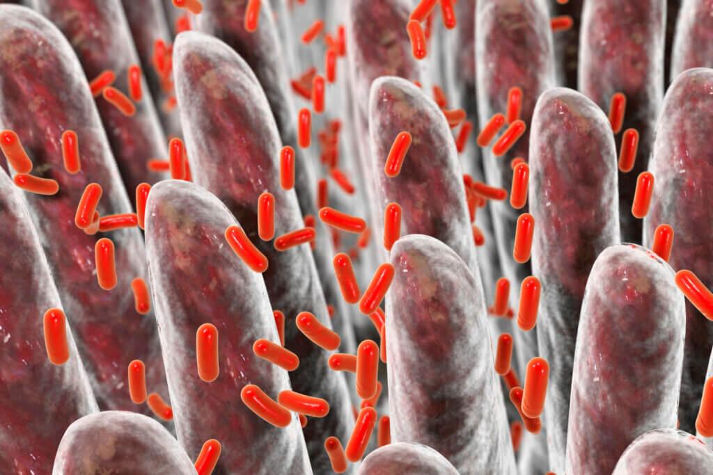 Síndrome del shock tóxico: síntomas y causas