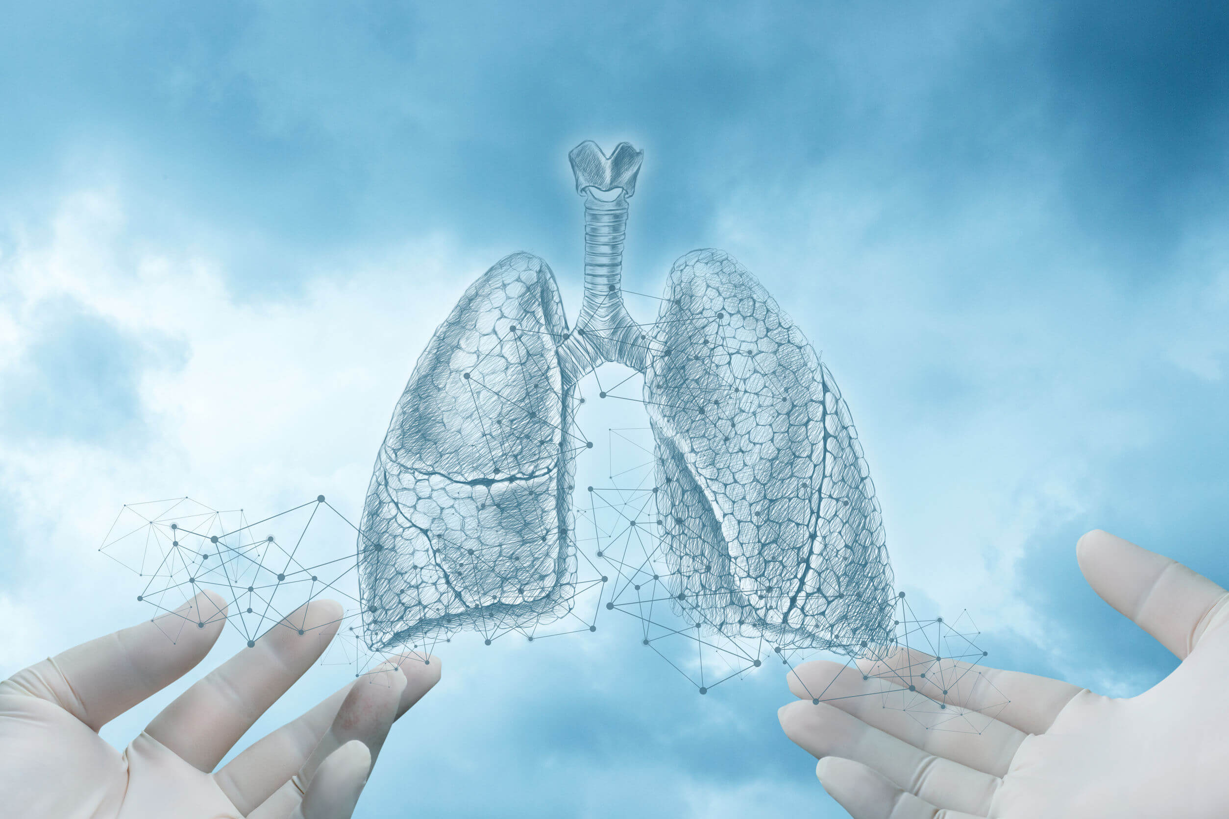 Pneumothorax is a disease of the respiratory system.