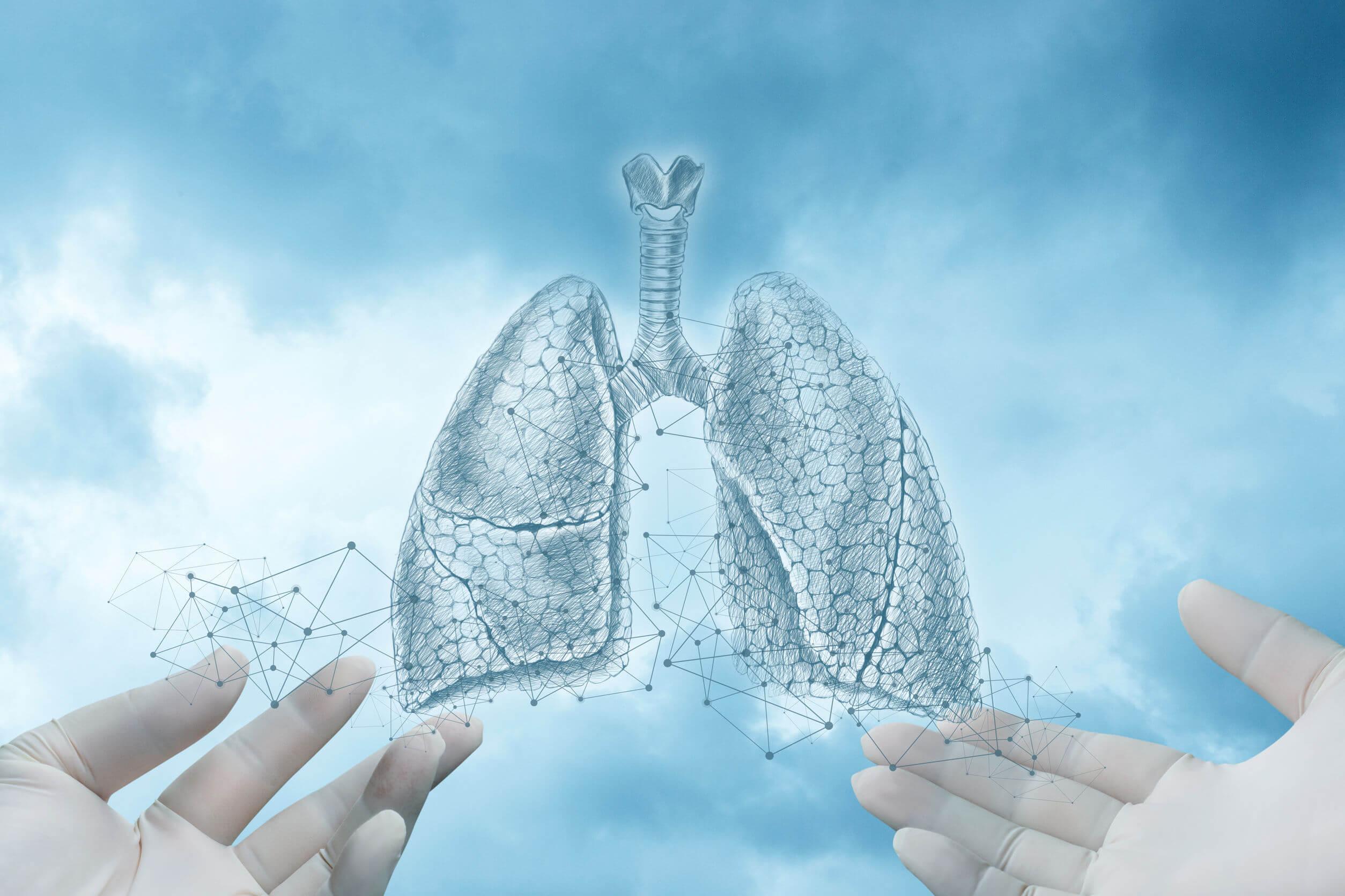 Lo pneumotorace è una malattia del sistema respiratorio.