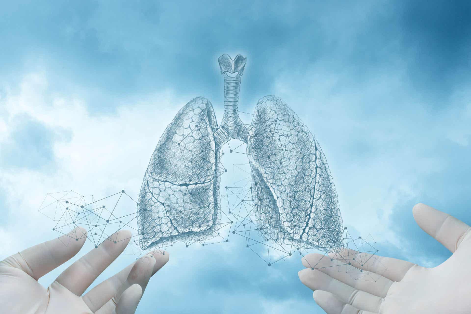 El neumotórax es una enfermedad del aparato respiratorio.