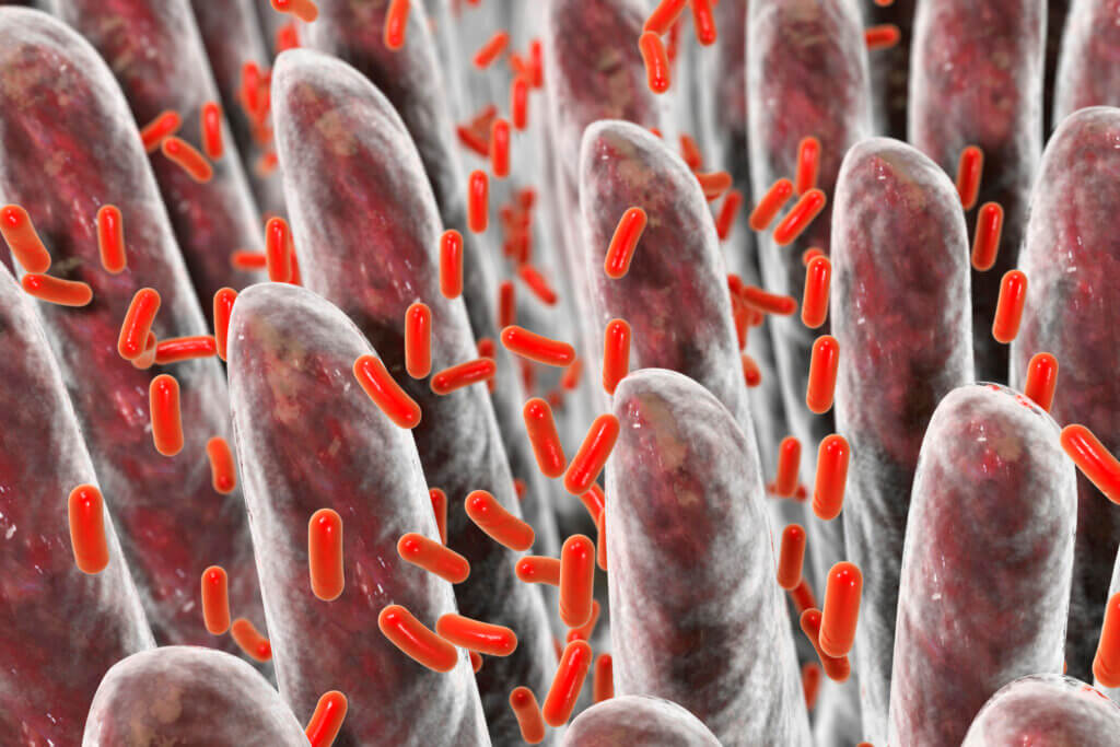 Bacteria are a type of germs.