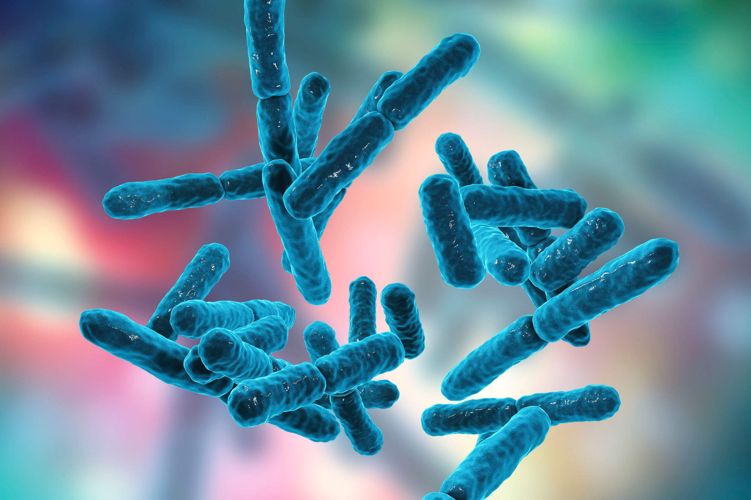 Microbiota protects against infections.