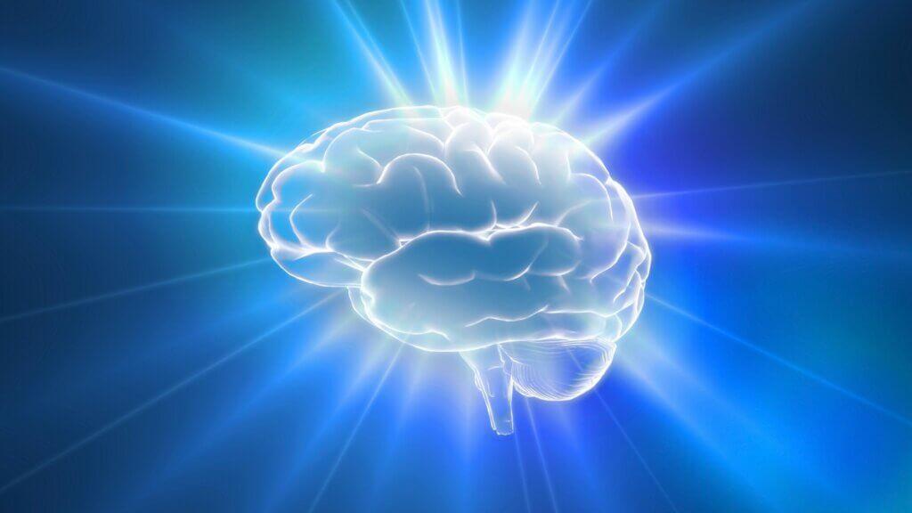O cérebro pode sentir dor?