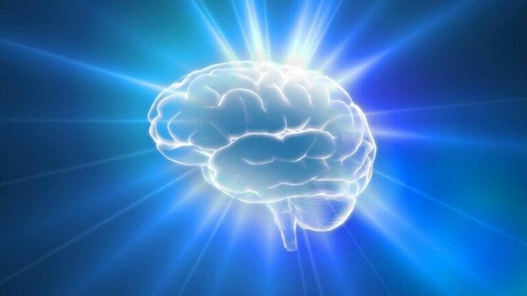 Il cervello può sentire dolore?