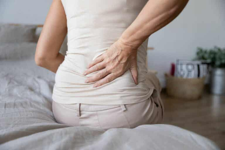 Back Pain: Symptoms, Types, Causes and Treatment