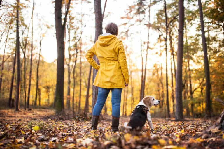 11 beneficios de tener un perro según la ciencia