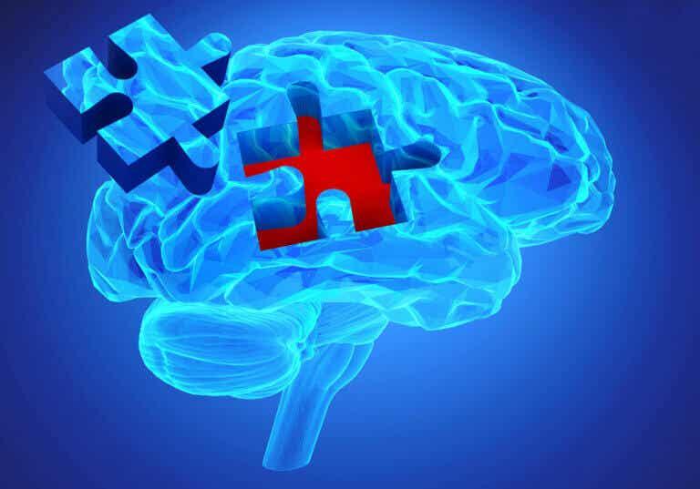 8 curiosidades sobre la memoria, según la ciencia