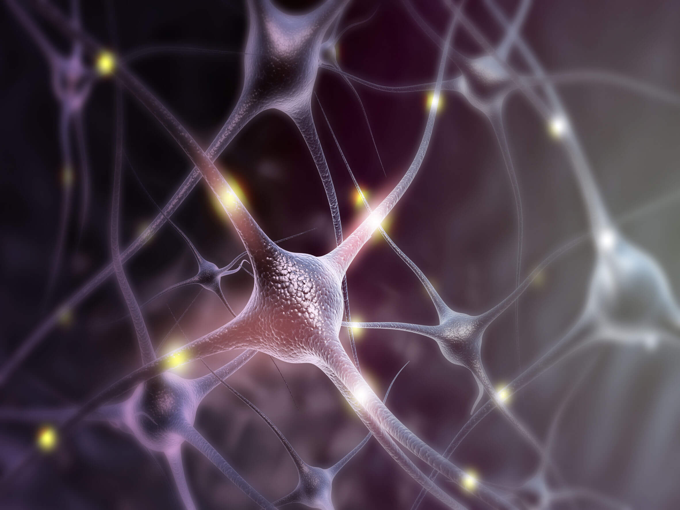 The neurotrophic factor can influence the activity of neurons.