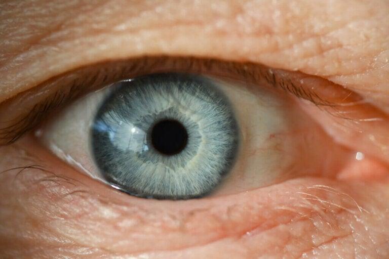 Descolamento de retina: sintomas, causas e tratamento