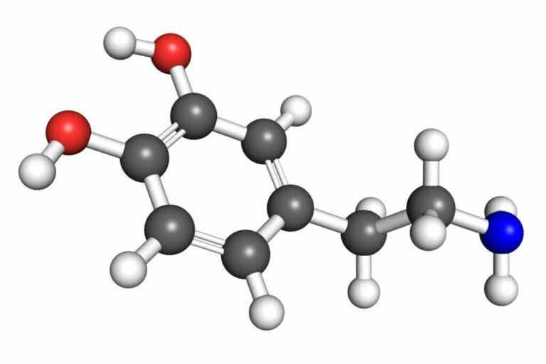 7 chiavi per aumentare i livelli di dopamina