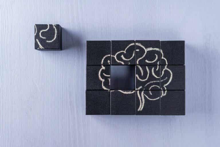 Cognitive Rehabilitation: What Does it Consist Of?