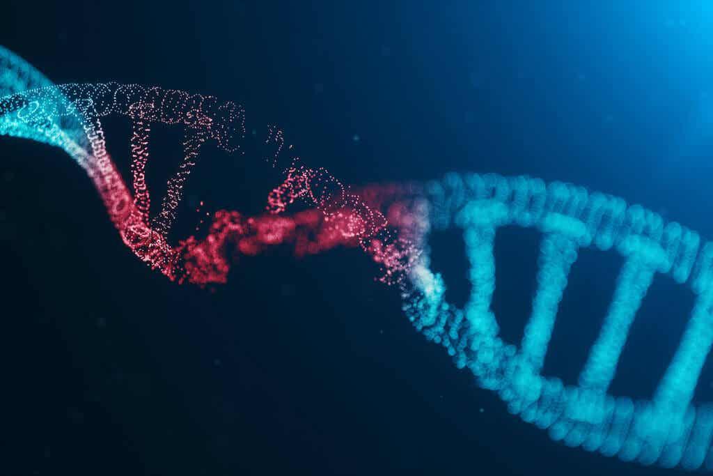 Genes en las causas de la artritis reumatoide.