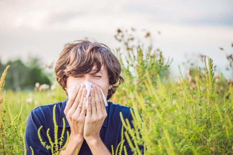 Síntomas de las alergias