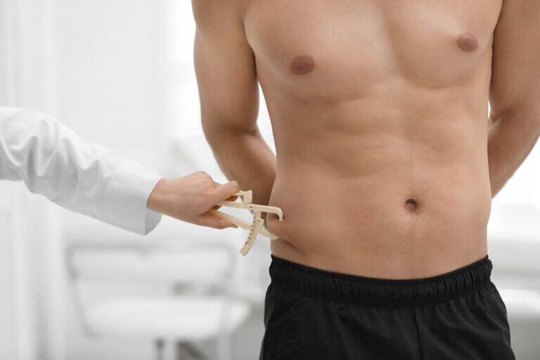 Diferencias entre grasa blanca y grasa parda