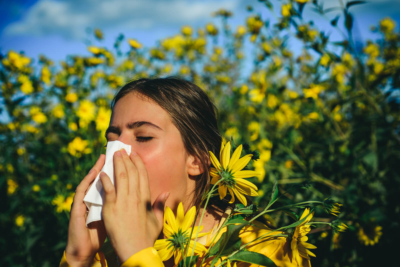 Alergia a ambrósia na primavera.
