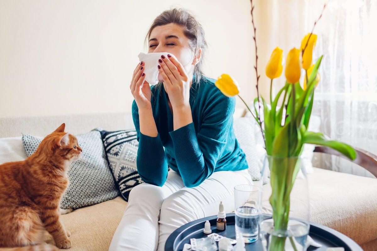 A alergia à ambrósia pode ser controlada.