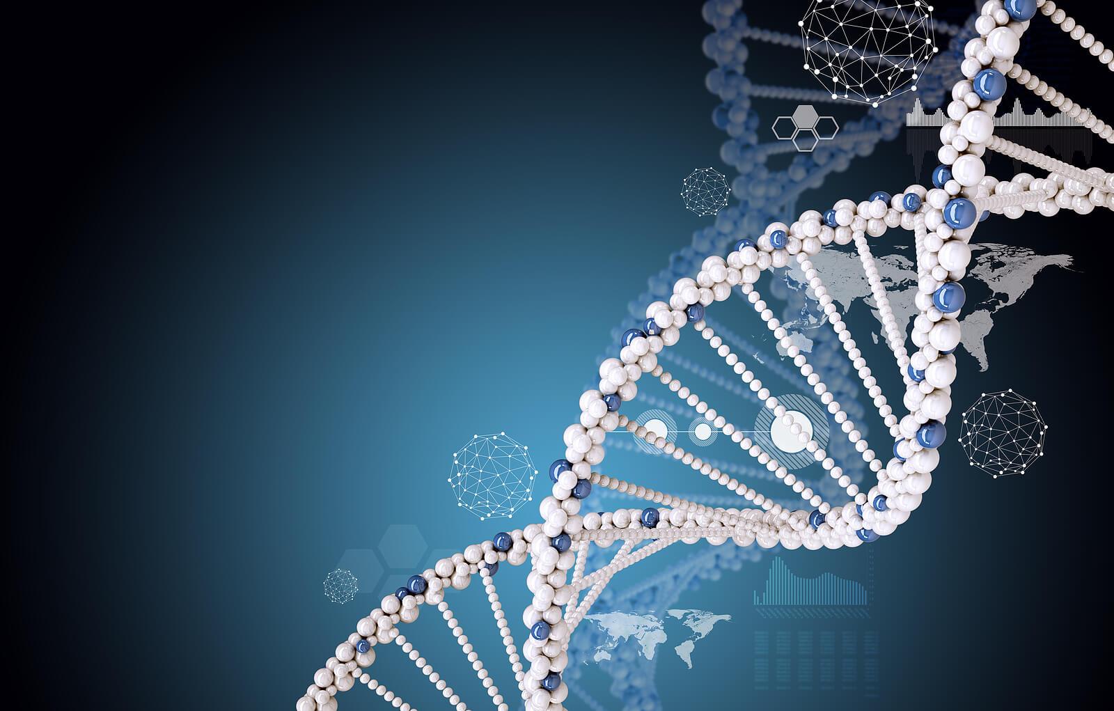 Genes and type 2 diabetes