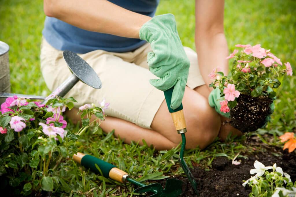 Hacer jardinería para vivir con esclerosis múltiple.