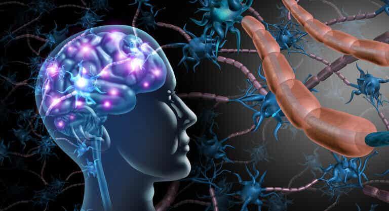 Esclerosis múltiple: síntomas, causas y tratamiento
