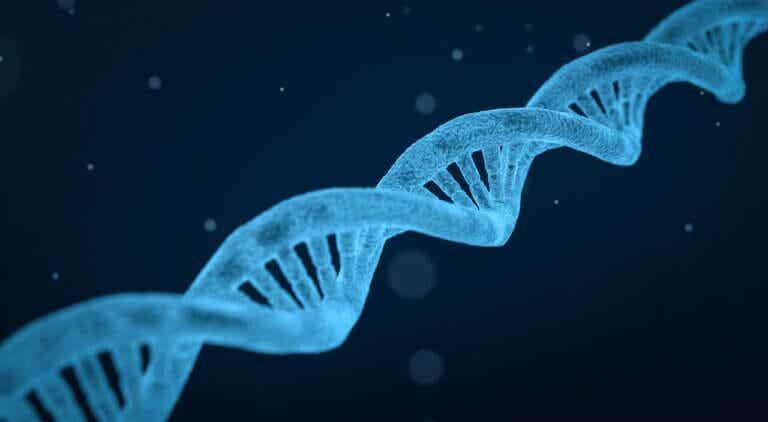 Las 10 enfermedades hereditarias más comunes