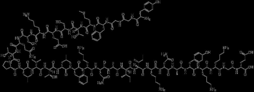 Endorphines: origine moléculaire, fonctions et mécanisme