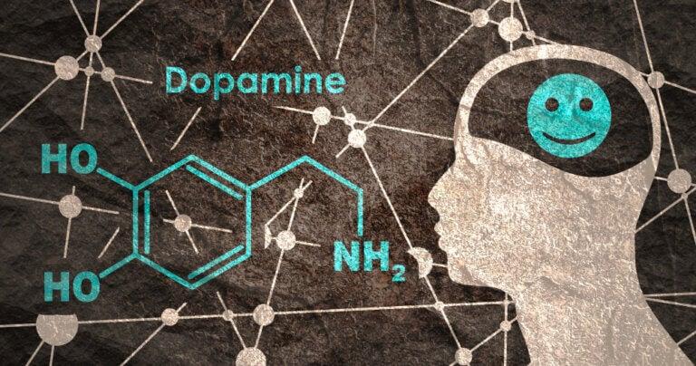 Dopamine: systèmes dopaminergiques, synthèse et récepteurs