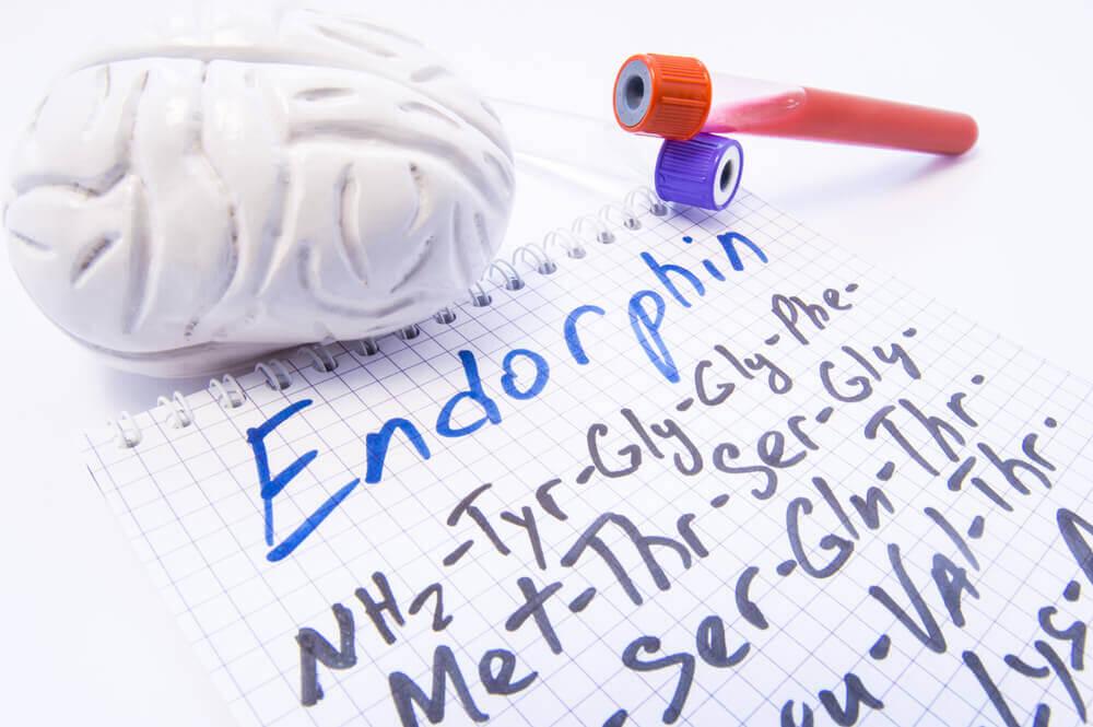 Endorfinas
