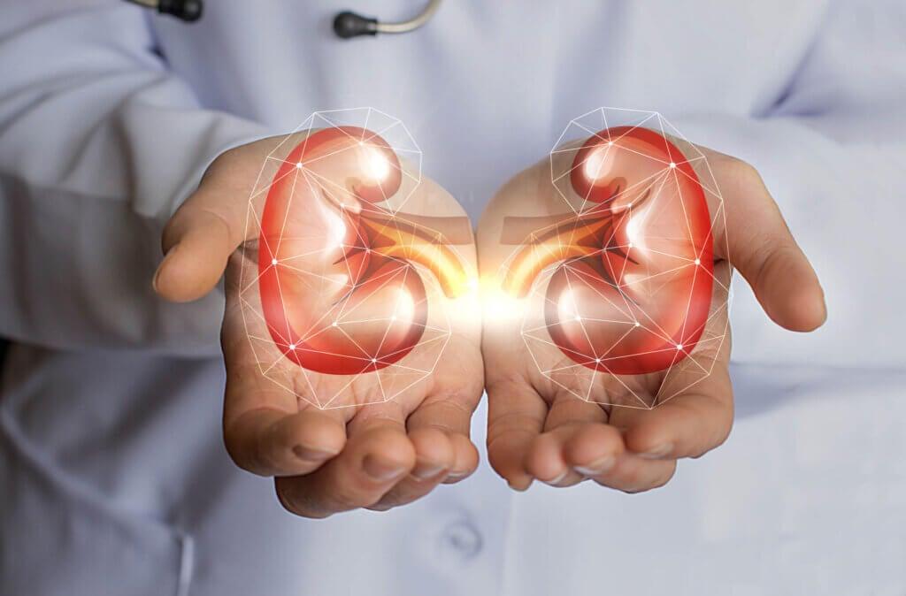 Saúde renal e enurese.