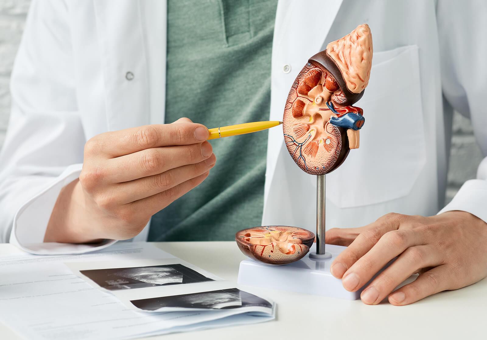 La diabetes y los problemas respiratorios se relacionan con daños en otros órganos