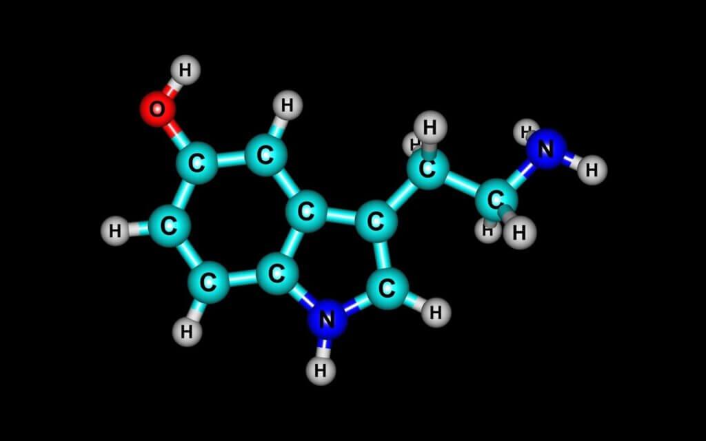 Sérotonine et dépression: comment sont-elles liées?