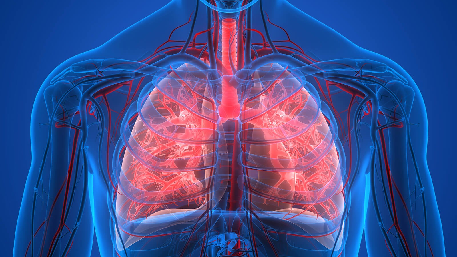 La diabetes y los problemas respiratorios se relacionan por el daño vascular