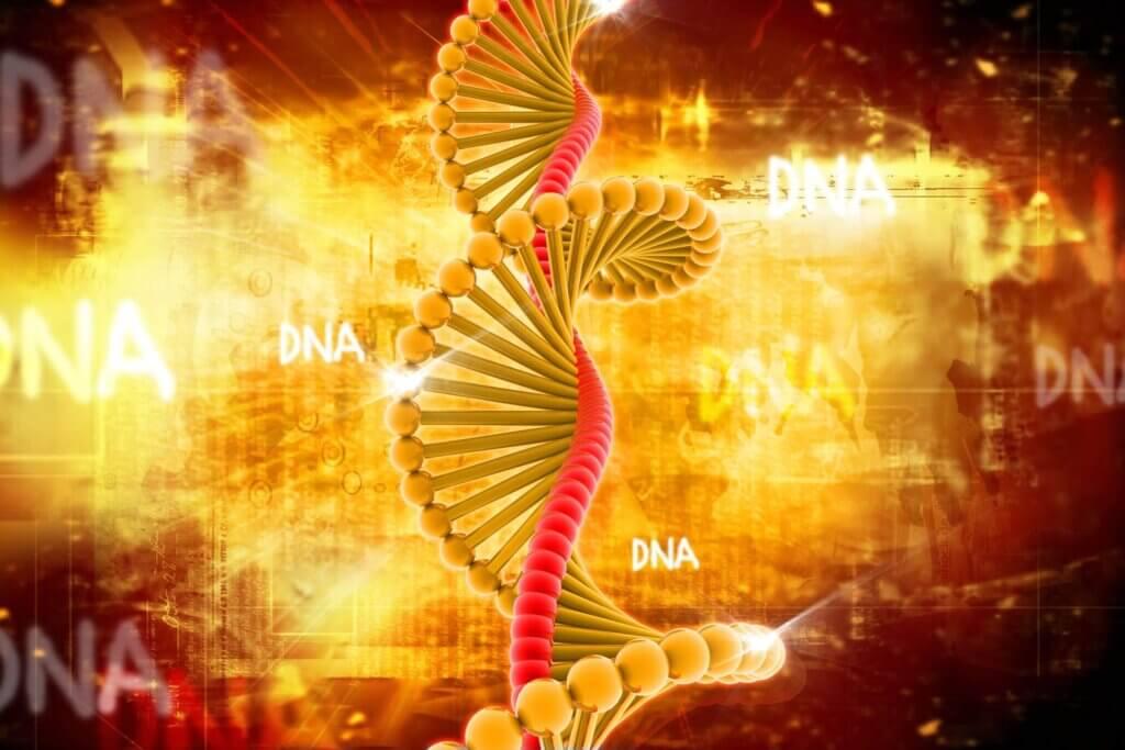 A talassemia é uma doença genética