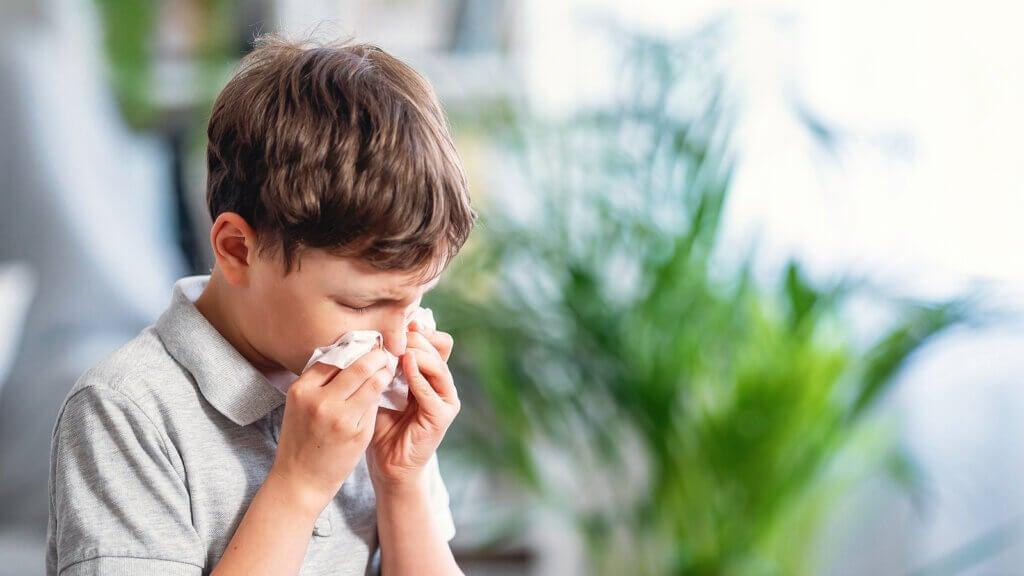 As 5 alergias mais comuns em crianças